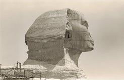 Grande cabeça retro da esfinge Fotografia de Stock Royalty Free