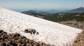 Grande cane della razza che pone la traccia della cascata dell'Oregon dell'alta montagna del campo di neve Fotografia Stock