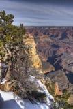 Grande canyon 4 Fotografie Stock Libere da Diritti