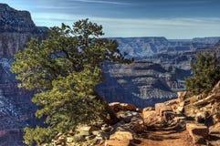 Grande canyon, Arizona 5 Immagini Stock Libere da Diritti