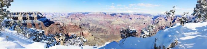 Grande canyon con neve Immagine Stock Libera da Diritti