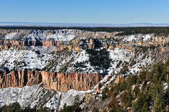 Grande canyon con neve Immagine Stock