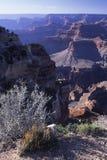 Grande canyon dall'orlo del sud Immagini Stock Libere da Diritti