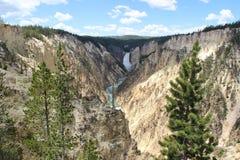 Grande canyon del Yellowstone Fotografia Stock