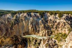 Grande canyon della sosta nazionale del Yellowstone Immagine Stock