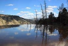 Grande canyon di Yellowstone fotografie stock libere da diritti