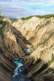 Grande canyon di Yellowstone Fotografia Stock