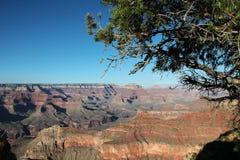 Grande canyon - vista dall'orlo del sud Fotografie Stock