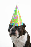 Grande cappello di compleanno Immagine Stock