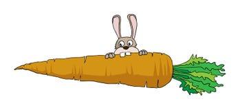 Grande carota Illustrazione di Stock