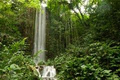 Grande cascade à écriture ligne par ligne dans une forêt Image libre de droits