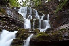 Grande cascade à écriture ligne par ligne de forêt Photos stock