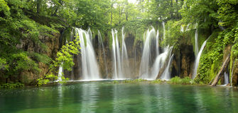 Grande cascade à écriture ligne par ligne dans la forêt Photos stock