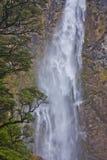Grande cascade grande dans Fiordlands au Nouvelle-Zélande image libre de droits