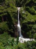Grande cascade de l'Himalaya dans une région de montagne verte Images libres de droits