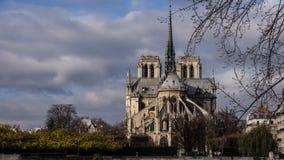 A grande catedral de Notre Dame Foto de Stock Royalty Free