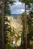 Grande Caynon parco nazionale del Yellowstone, Yellowstone fotografie stock