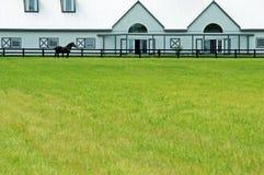 Grande celeiro moderno com um cavalo Imagens de Stock