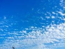 Grande cielo Fotografie Stock Libere da Diritti