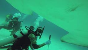 Grande cineoperatore di attacco del pesce del martello subacqueo Fauna selvatica dell'oceano deepness tuffatori stock footage