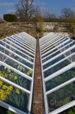 Grande cloche en verre de jardin Photos libres de droits