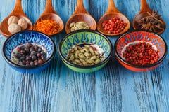 Grande coleção de especiarias e de ervas diferentes Imagens de Stock Royalty Free