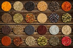 Grande coleção de especiarias e de ervas diferentes Fotos de Stock Royalty Free