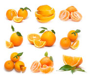 Grande collection d'oranges mûres Images stock