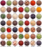 Grande collection de différentes épices et herbes Photographie stock