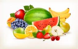Grande collection de fruit frais différent illustration stock