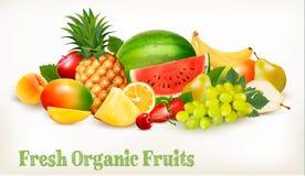 Grande collection de fruit frais différent illustration de vecteur