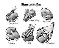 Grande collection de gravure de viande illustration stock