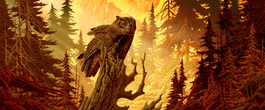 Grande coruja Horned imagem de stock royalty free