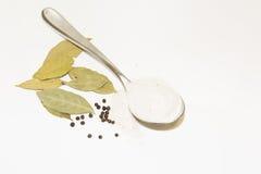 Grande cuillère de sel, de poivre et de feuille de laurier Image stock