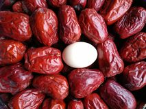 Grande date rouge - fruit de jujube - grande comme eeg Photo libre de droits
