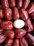 Grande date rouge - fruit de jujube - grande comme eeg Photographie stock libre de droits