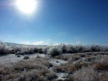 Grande deserto del bacino nell'Utah durante l'inverno con i cristalli di neve sull'artemisia immagine stock libera da diritti