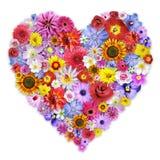 Grande disposizione floreale heart-shaped Fotografie Stock Libere da Diritti