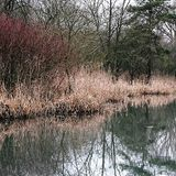 Grande Driffield Yorkshire do leste Inglaterra Foto de Stock Royalty Free