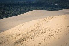 Grande duna di Pyla, la duna di sabbia più alta sedere in Europa, Arcachon Immagini Stock Libere da Diritti