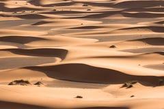 Grande dune avec des étapes et ciel bleu après lever de soleil au Sahara Image stock
