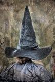 Grande e chapéu pointy longo da bruxa para o Dia das Bruxas imagem de stock royalty free