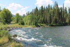 Grande en el río imagenes de archivo