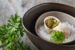 Grande Escargot de Bourgogne - os caracóis cozeram a manteiga de alho, com fotos de stock