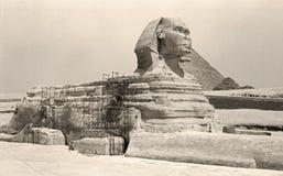 Grande esfinge retro de Giza Fotografia de Stock Royalty Free