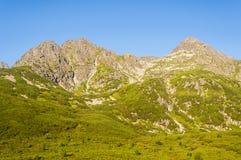 Grande estar en las montañas Imagenes de archivo