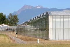 Grande estufa industrial no vale Foto de Stock Royalty Free