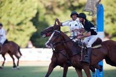 Grande finale della settantesima Argentina Pato aperto. Immagine Stock