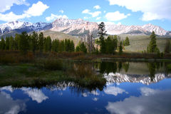 Grande fiume di legno 2009 04 Fotografia Stock Libera da Diritti