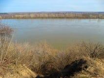 Grande fiume in primavera Fotografia Stock